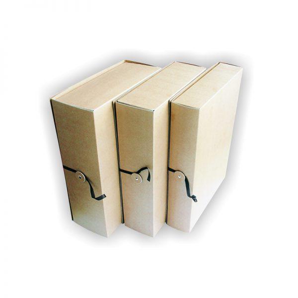 Arhiivikarp nööbi ja paelaga SMLT