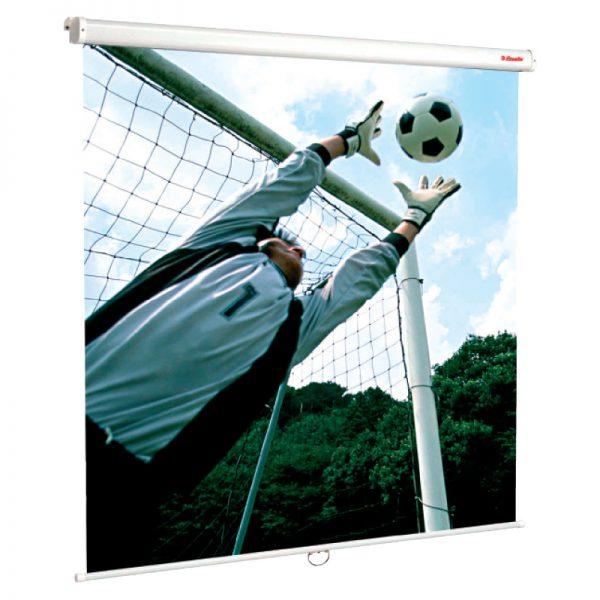 Ekraan Esselte seinale 180cm x 180cm - Esselte